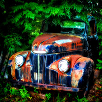 Rusting in the Shade